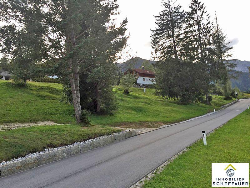 baugrundst ck in steinberg zu verkaufen immobilien austria. Black Bedroom Furniture Sets. Home Design Ideas